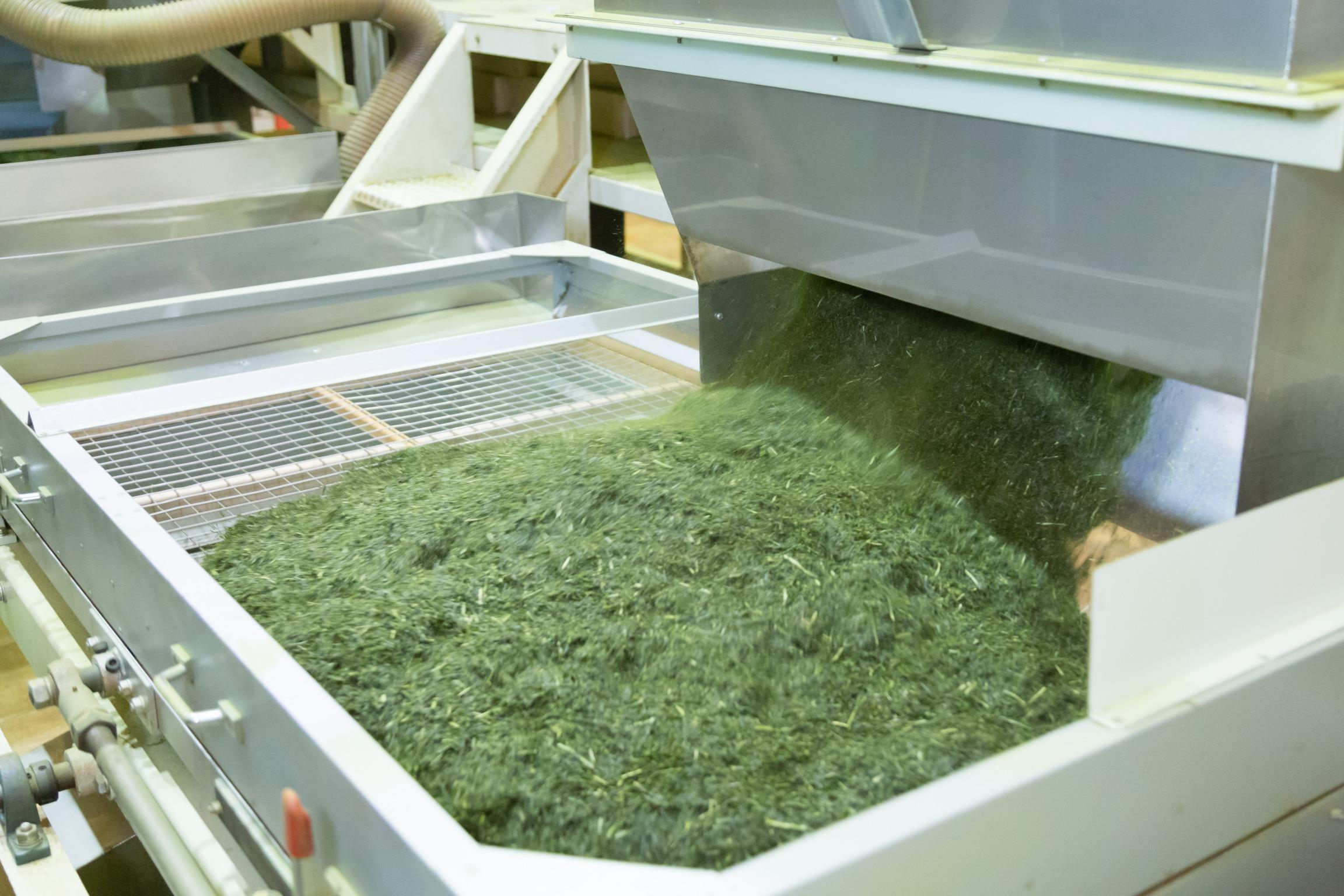 有限会社一成 お茶製造工場 作業工程