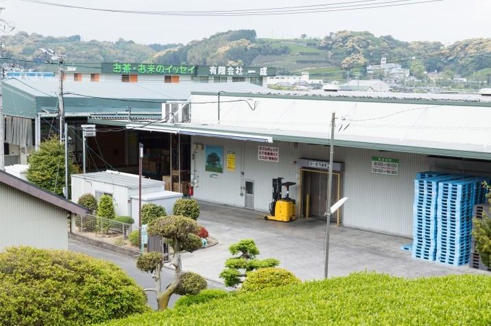 有限会社一成 お茶製造工場